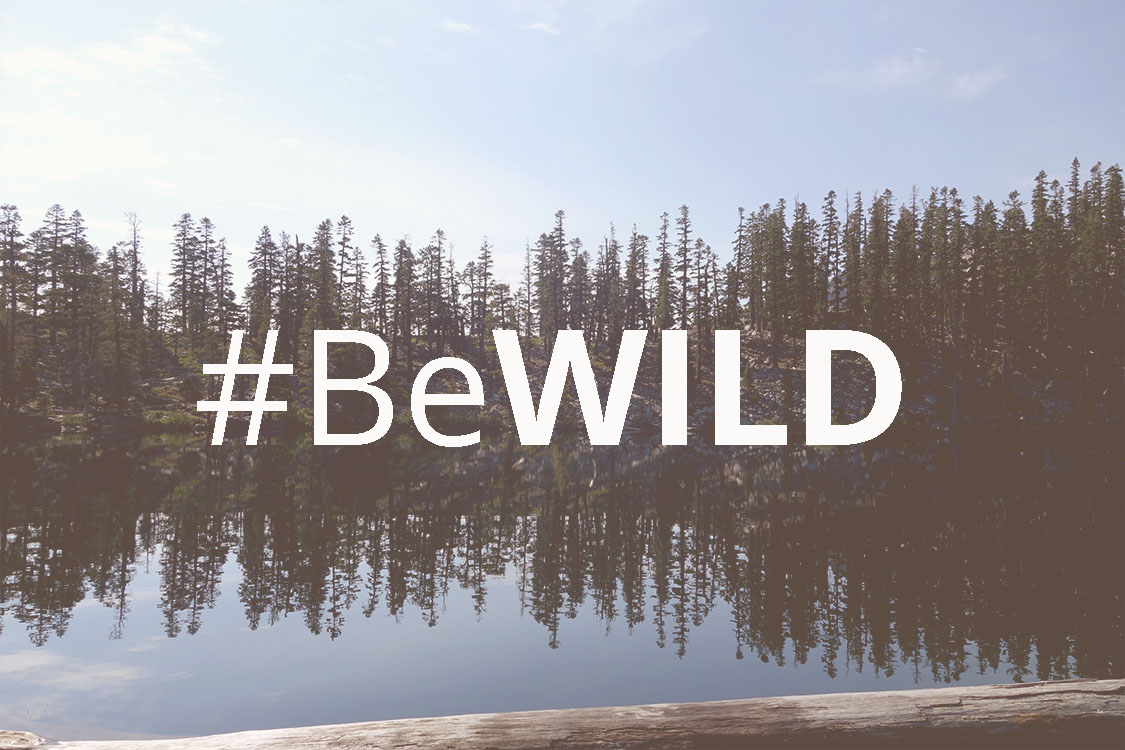 #BeWild: Don't Be Nice