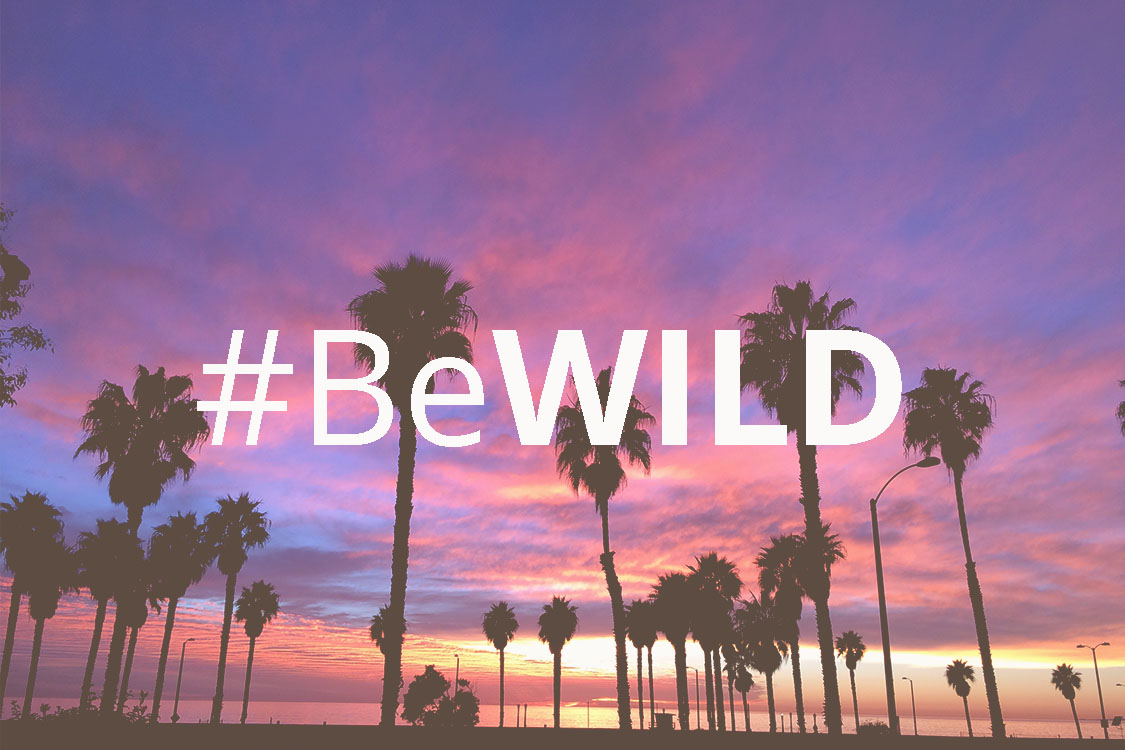 #BeWild: A Life Worth Living